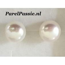 Grote* pareloorknoppen 13-13.5mm AAA bouton zilver