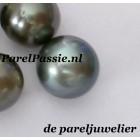 Tahiti blauwe zoutwaterparels 11mm bio perfect voor ring