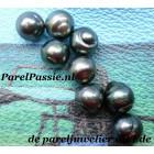 Lot Tahiti zoutwaterparels 10 tot 11 mm zwarte grijze parels per 8