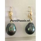 Grote Tahiti parels oorhangers 14k gouden zwart pauw ca. 11,1 - 14,7 mm