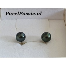 Tahiti oorbellen oorknoppen zoutwater oorstekers ca. 8mm zilver 925