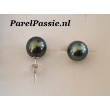 Tahiti oorbellen stekers zoutwater oorstekers zwart groen tone ca. 9.5mm zilver 925